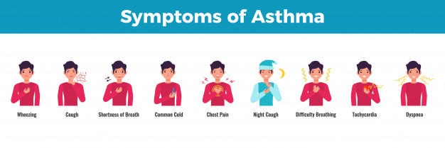 Pathophysiology of Asthma: symptoms and treatment for asthma 7 - Daily Medicos