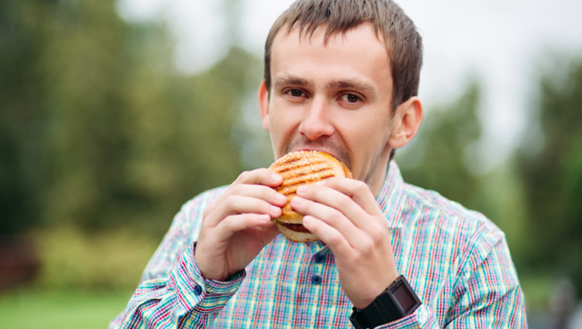Are you a junk foodie? Impact of Junk Food on Internal Organs 1 - Daily Medicos
