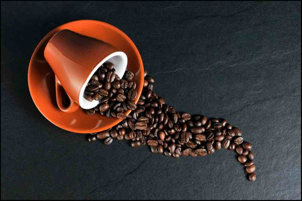 All About the coffee: How long does the Coffee last? 1 - Daily Medicos
