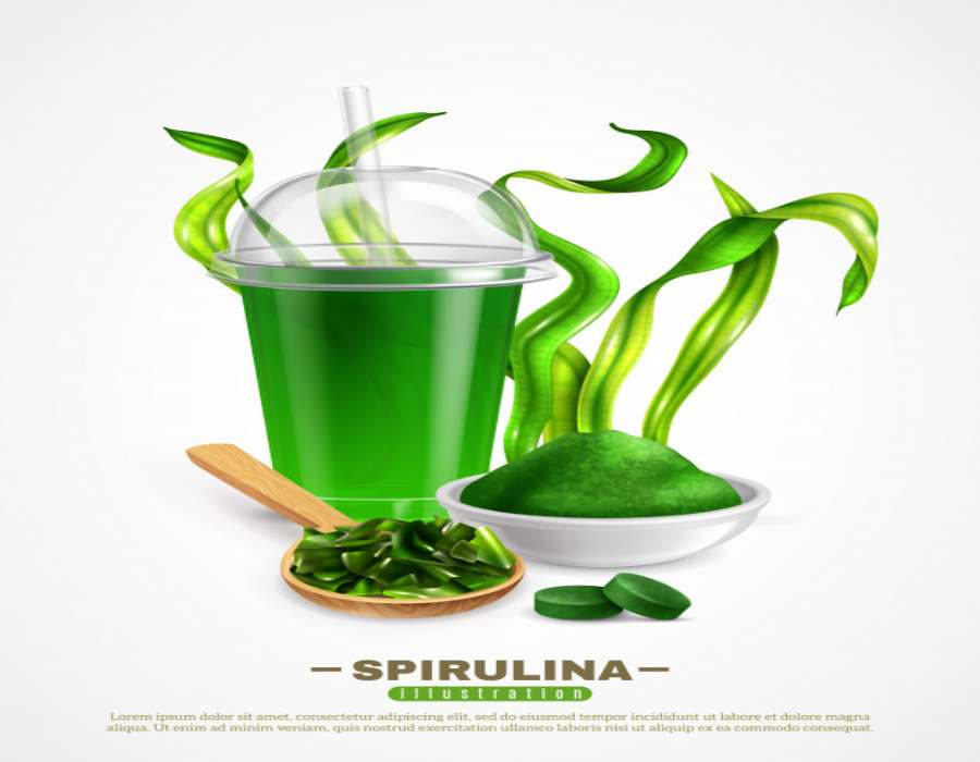 Spirulina; Health Benefits, Side Effects, Daily Intake, and Nutritional Profile 1 - Daily Medicos