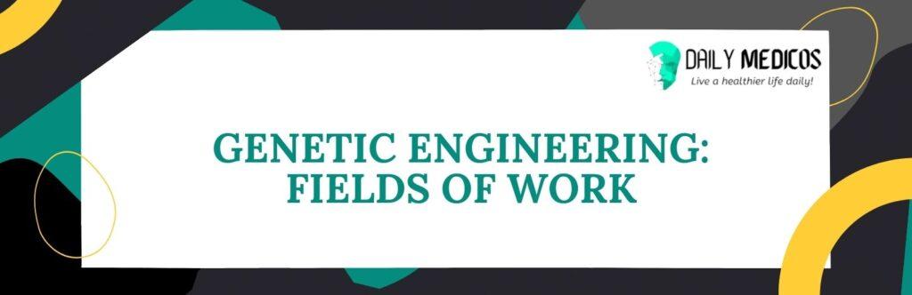 Genetic Engineering: Fields Of Work