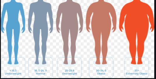 BMI Calculator 1 - Daily Medicos